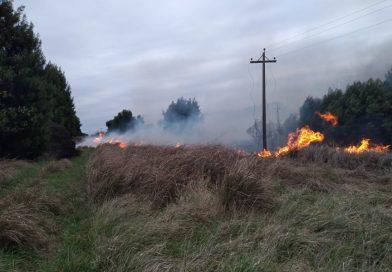 COMO ADVIRTIO EL SMN: Hubo incendio de pastizales en la Autovía 2
