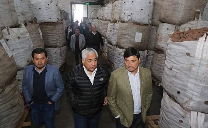 Primera exportación de batatas de San Pedro a Inglaterra